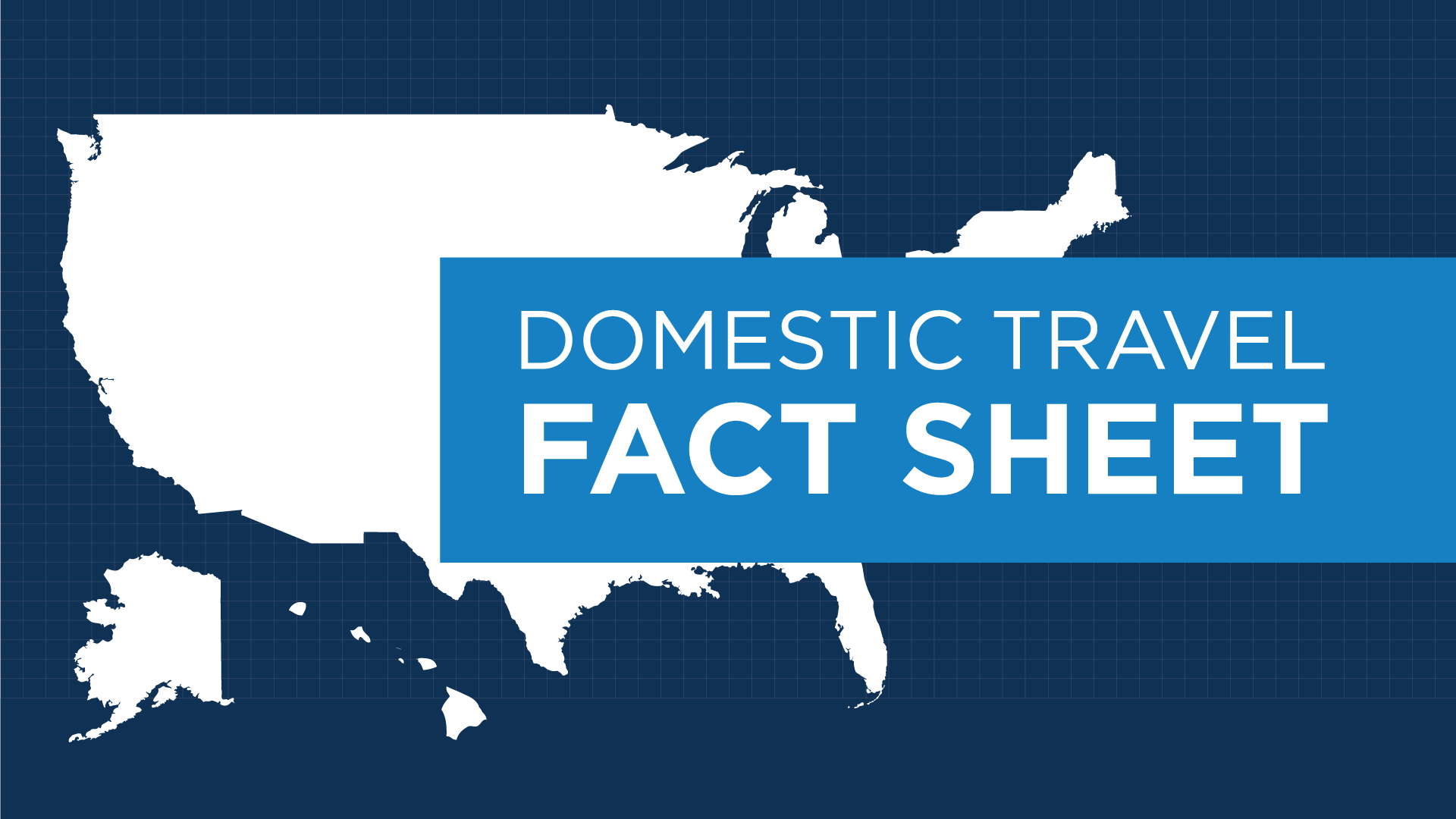 media Domestic Travel Fact Sheet